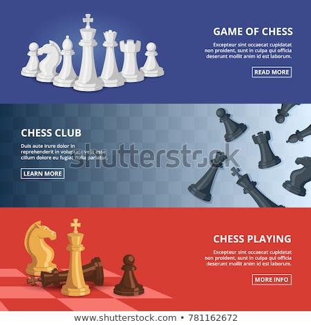 шахматная доска дизайна белый текстуры бесшовный материальных Сток-фото © ExpressVectors