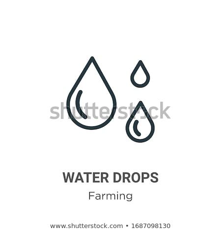 water · olie · drop · lijn · icon · schets - stockfoto © rastudio