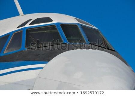 Samolotów bagaż stylizowany cywilny lotnictwo nowoczesne Zdjęcia stock © tracer