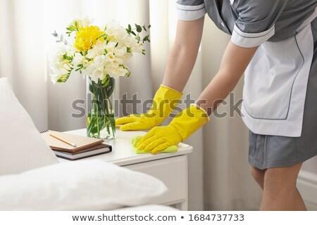 Ev hizmetçi örnek beyaz bilim kadın Stok fotoğraf © bluering