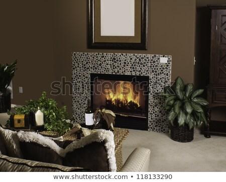 Szoba jelenet kandalló lámpák illusztráció ház Stock fotó © bluering