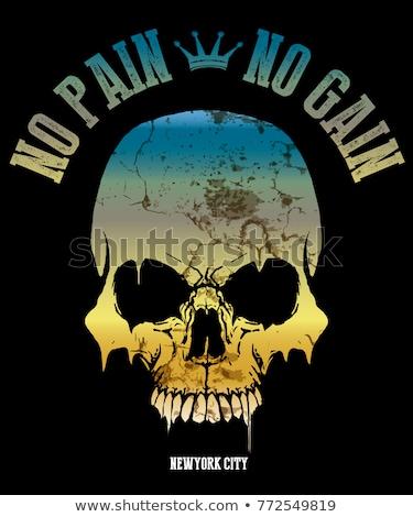 pirate poster with skulls stock photo © sharpner