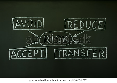 Handwritten Risk Assessment on a Chalkboard. Stock photo © tashatuvango