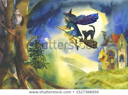 Halloween heks vliegen bezemsteel scène vriendelijk Stockfoto © Krisdog