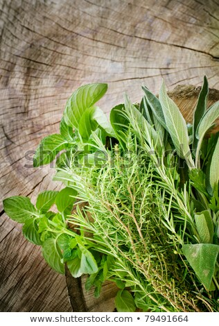 Fresh aromatic sage on old wooden background Stock photo © Virgin