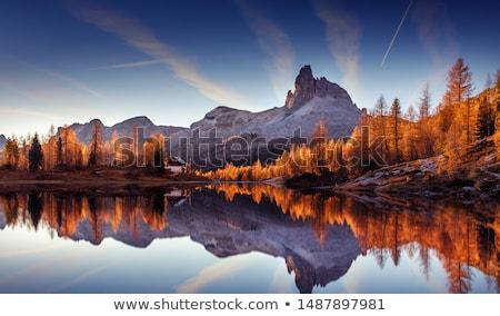 Outono paisagem belo árvore montanhas bétula Foto stock © Kotenko