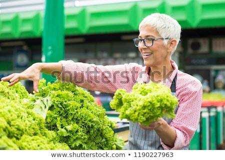 Idős nő saláta piactér portré szemüveg Stock fotó © boggy