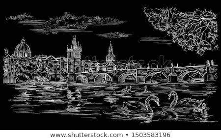 白鳥 プラハ 白 川 橋 建物 ストックフォト © Givaga