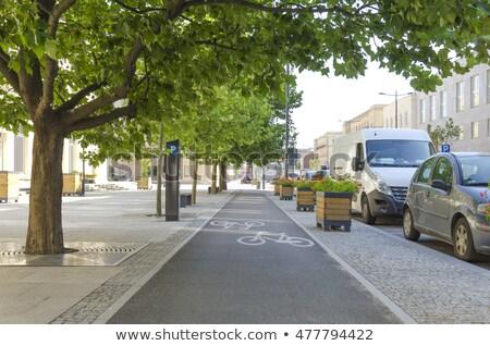 Park jelenet bicikli fa fű tájkép Stock fotó © colematt