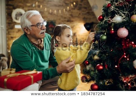 Előkészítés karácsony tél ünnepek tevékenységek vektor Stock fotó © robuart