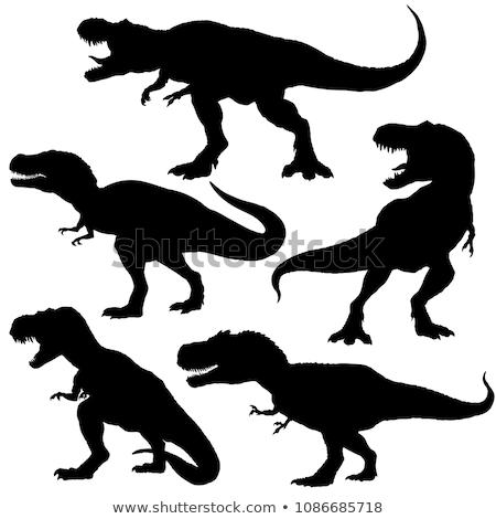 Conjunto silhueta dinossauro ilustração sorrir fundo Foto stock © colematt