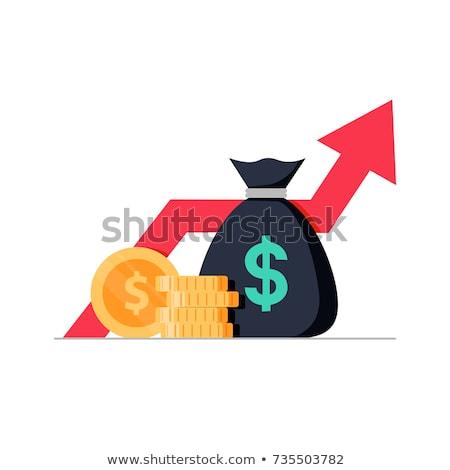 収入 ベクトル アイコン 孤立した 白 ビジネス ストックフォト © smoki
