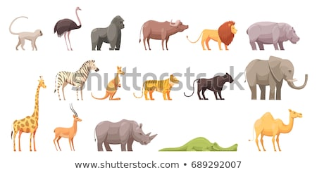 African animal landscape art background Stock photo © cienpies