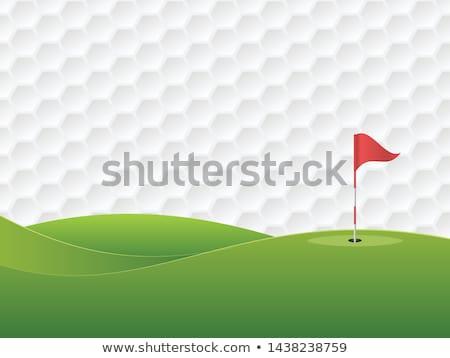 golf · torneo · plantilla · ilustración · vector · eps - foto stock © bluering