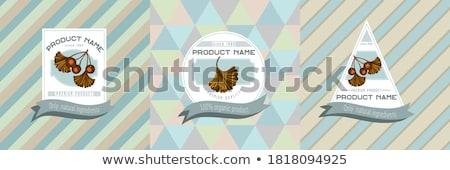 vintage · fondation · étiquettes · badges · design - photo stock © netkov1
