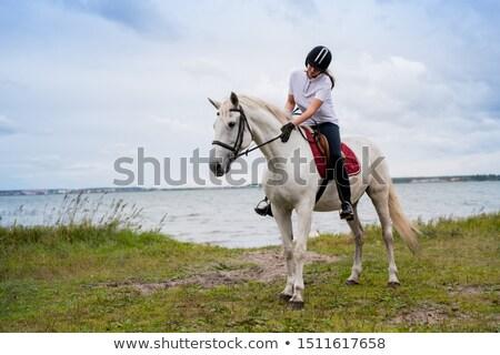 Fiatal nő lovas fehér mozog fából készült kerítés Stock fotó © pressmaster