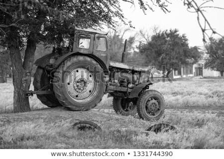 Rolnik stałego gospodarstwa maszyn stodoła lata Zdjęcia stock © HighwayStarz