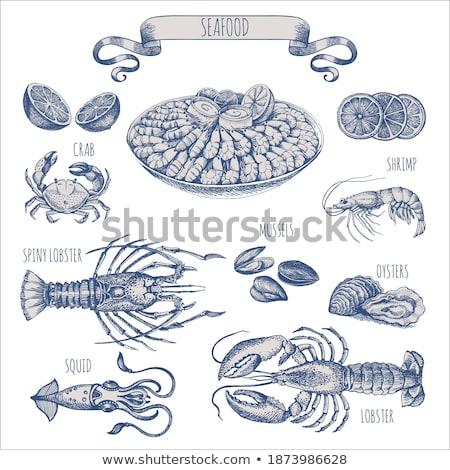 Shrimp Delicious Sea Animal Monochrome Vector Stock photo © pikepicture