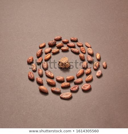 кадр органический какао бобов масса продовольствие Сток-фото © artjazz