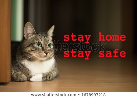 Staying Safe At Home During Coronavirus Pandemic Stock photo © AndreyPopov
