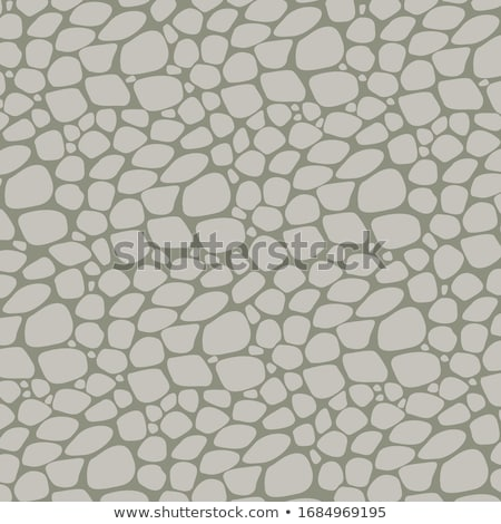Pebbles stone road backdrop Stock photo © boggy