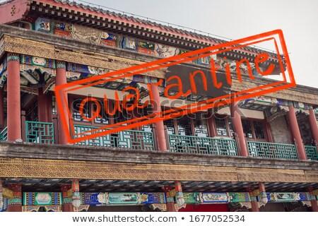 コロナウイルス 流行 中国 北京 古い ショッピング ストックフォト © galitskaya