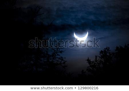 Solar eclipse 2011 sol paisagem Foto stock © phbcz
