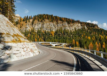 autumn forest winding road bridge it stock photo © justinb