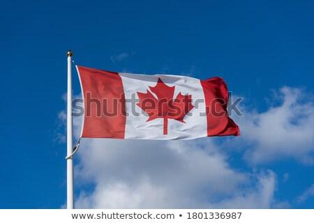 Онтарио флаг Flying ветер флагшток глубокий Сток-фото © brianguest