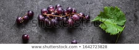 Druif wijnstok naadloos patroon herhalen ontwerp Stockfoto © ElaK