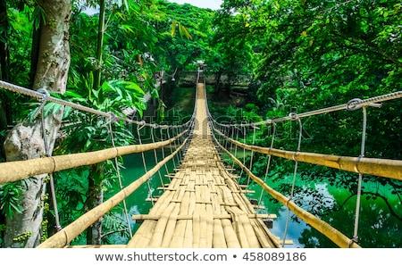 Hanging bridge Stock photo © ziprashantzi