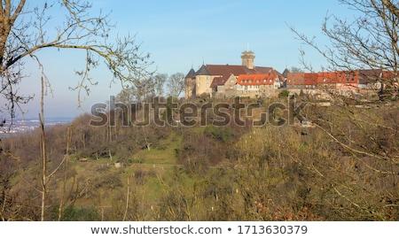 congelato · castello · inverno · panorama · colore · illustrazione - foto d'archivio © prill