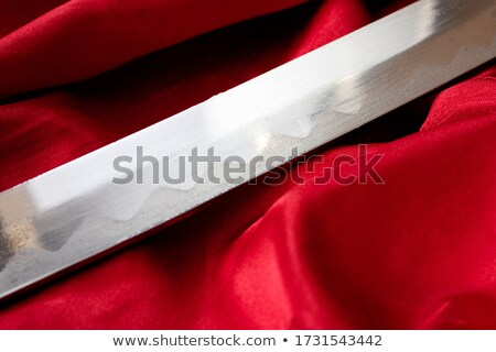 Closeup of katana sword handle and blade Stock photo © Arsgera