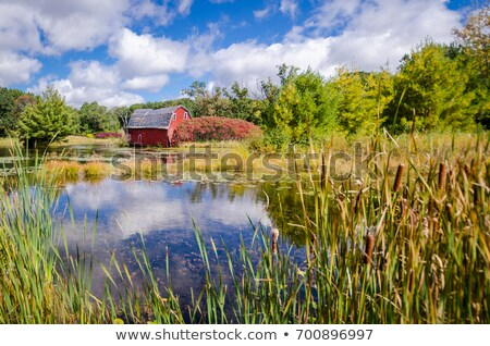 An Abandoned Barn Collapsing Stock photo © rhamm