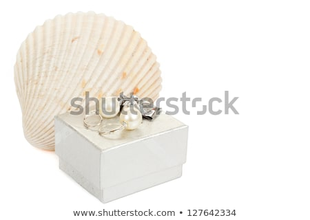 two pearl earrings, shells and gift box isolated on white stock photo © artush