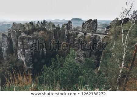Bastei rock 04 Stock photo © LianeM