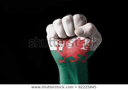 Fist Painted In Colors Of Wales Flag Foto stock © vepar5