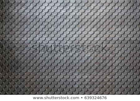 Schalen pantser textuur zoals betegelde Stockfoto © ArenaCreative