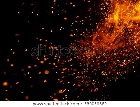 hoguera · fuego · madera · noche · llama - foto stock © silkenphotography