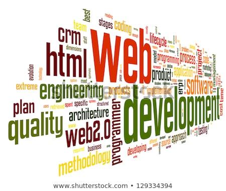 Web Development. Wordcloud Concept. Stock photo © tashatuvango