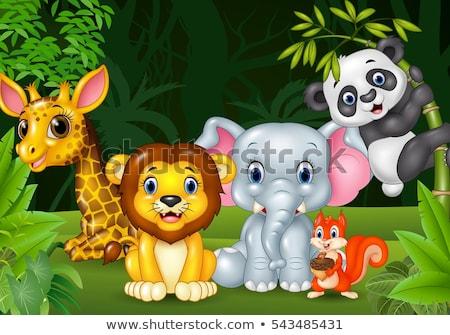 サファリ動物 漫画 美しい 風景 面白い 森林 ストックフォト © aminmario11