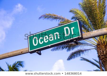 улице подписать известный улице океана дисков Майами Сток-фото © meinzahn