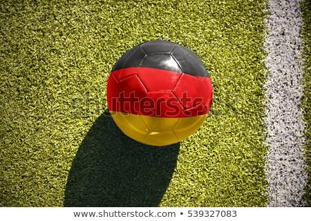 サッカーボール ドイツ フラグ ピッチ サッカー 世界 ストックフォト © stevanovicigor