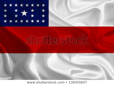 State flag of Amazonas in Brazil Stock photo © speedfighter