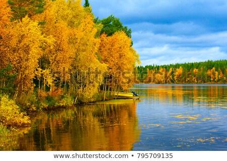 Autunno alberi acqua foglia viaggio lago Foto d'archivio © bmonteny