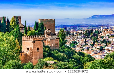 Alhambra Castle Tower Granada Andalusia Spain Stock photo © billperry