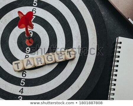 Insurance - Arrows Hit in Target. Stock photo © tashatuvango