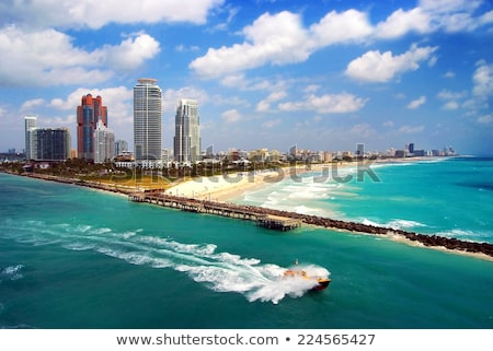 Pálmafák dél tengerpart Miami Florida égbolt Stock fotó © meinzahn
