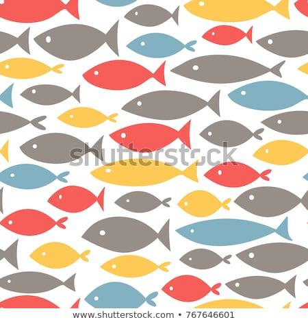 Mały ryb wzór dwa wzorców obraz Zdjęcia stock © tracer