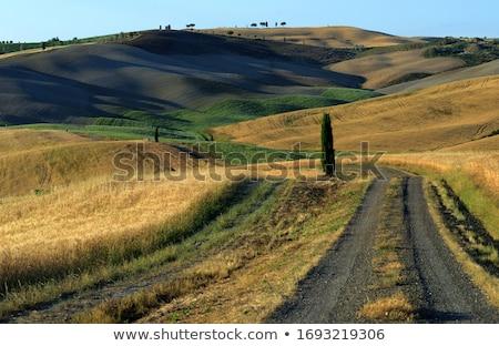 manzara · görmek · Toskana · İtalya · mavi · gökyüzü · yaz - stok fotoğraf © w20er